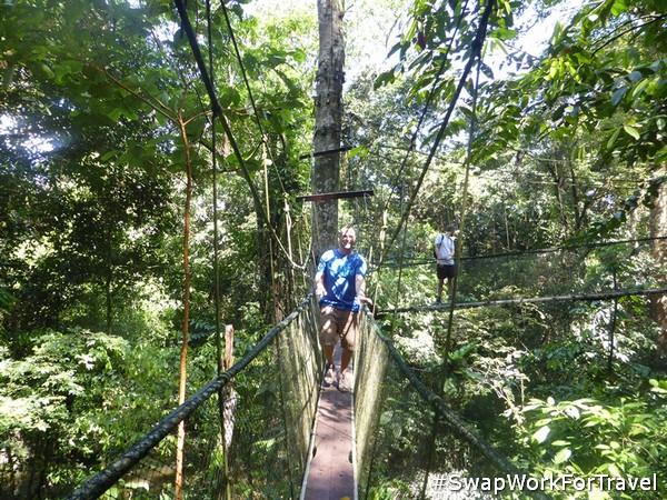 Jungle adventure in Borneo