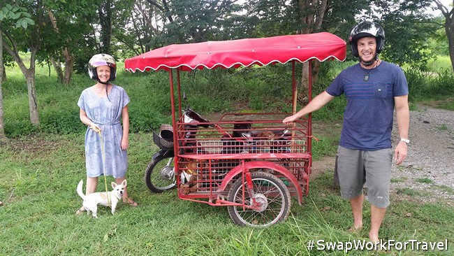 We took the dogs to the park in the scooter/side car in Chiang Mai. It was hilarious!